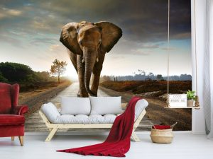 Interior Fototapet mighty elephant