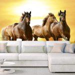 Interior Fototapet horses